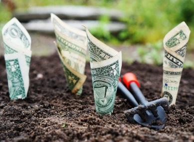 מודעות וכסף