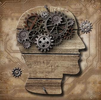 מעגלי מוח