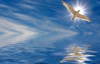 מימוש הייעוד בשיטת תנודות הנשמה