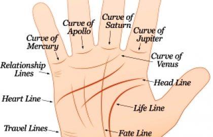 כירולוגיה (קריאת כף יד)