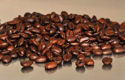 גישרי (קליפות קפה)