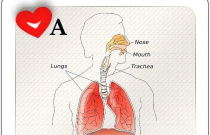 דלקת בדרכי הנשימה