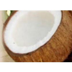 שמן קוקוס