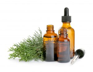 Herbs in test tube